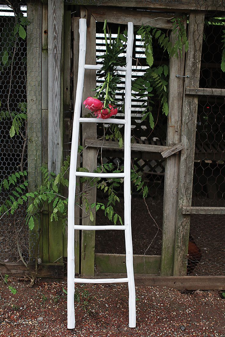 Abbeville Painted Wood Ladder