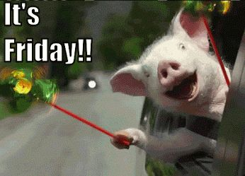You can always tell its Friday! | Reaction Gifs tagged TGIF
