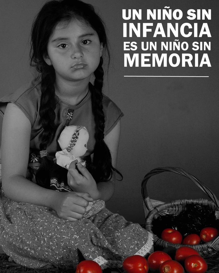 Estudio realizado para campaña de Memoria y Territorio. -DerechosReservados-