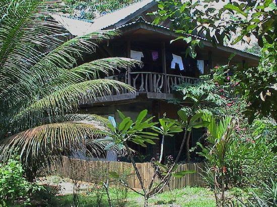 Gunung Leuser National Park - Jungle Lodge #Indonesia