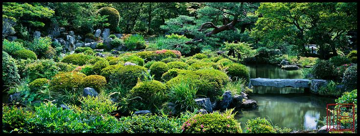I want to go to Kyoto. William Corey | Japanese Garden Art for Sale | Photography