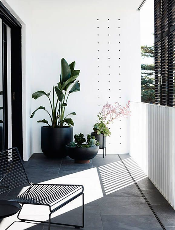 Black Planters in Patio /