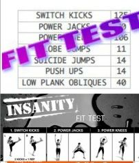 Im not insane, but this piqued my interest. Insanity Fit Test - Printable