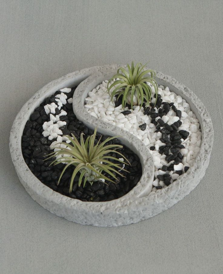 Relaxing Yin Yang inspired Zen terrarium comes with colorful pebbles and two air plants. #Jardinzen #jardinesideas