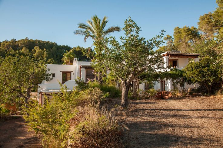 Agroturismo Can Marti, Ibiza. Our agroturismo is surrounded by 42 acres of organic orchards, strawberry fields, vegetable gardens, olive groves and vineyards http://www.organicholidays.com/at/194.htm