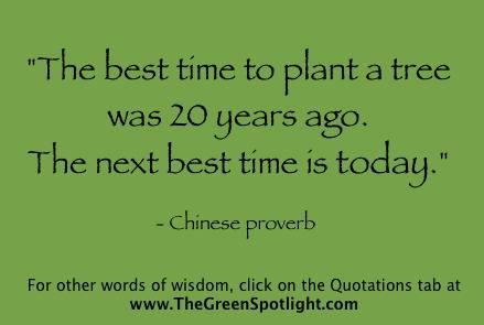 Are you planting trees, literally and figuratively?