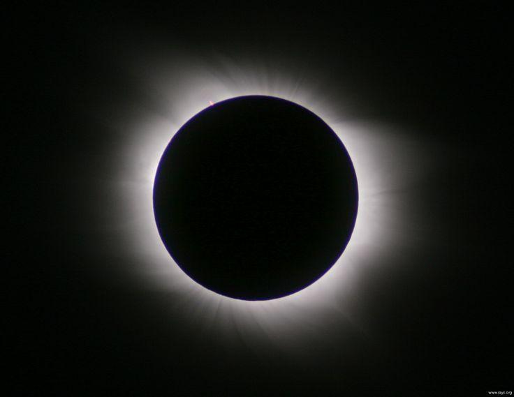 https://s-media-cache-ak0.pinimg.com/736x/a6/a5/cf/a6a5cf9f8374e0923554cb39b4bb8c80.jpg