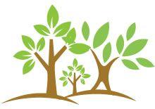 Las mejores adivinanzas infantiles cortas de plantas, flores y árboles para…