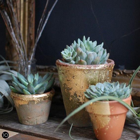 DIY Gilded Terracotta Pots
