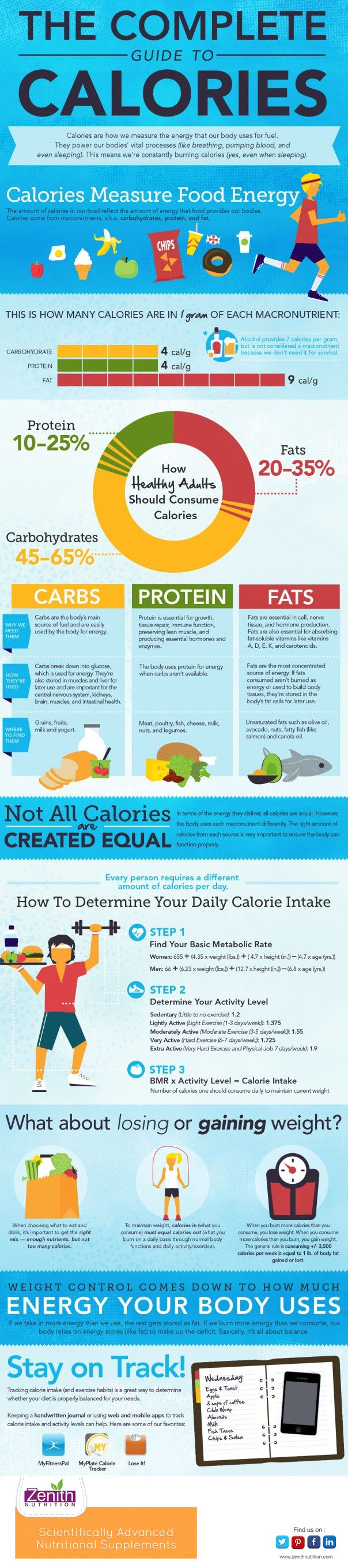 The Complete Guide to Calories. Calories measure food energy. Carbs, Protein and Fats. Not all calories are created equal. How to determine your daily calorie intake. What about losing and gaining weight. Weight control comes down to how much energy your body uses - Stay on Track. Best supplements from Zenith Nutrition. Health Supplements. Nutritional Supplements.  Health Infographics