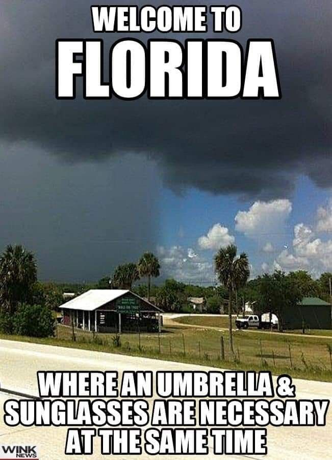 Pin By Jeannette Southard Dwyer On Fl Weather Florida Funny Florida Fl Weather