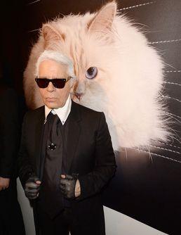 La Choupette de Karl Lagerfeld a gagné près de 3 millions d'euros en 2014