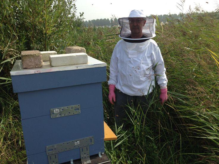 Bezig bij de bijen