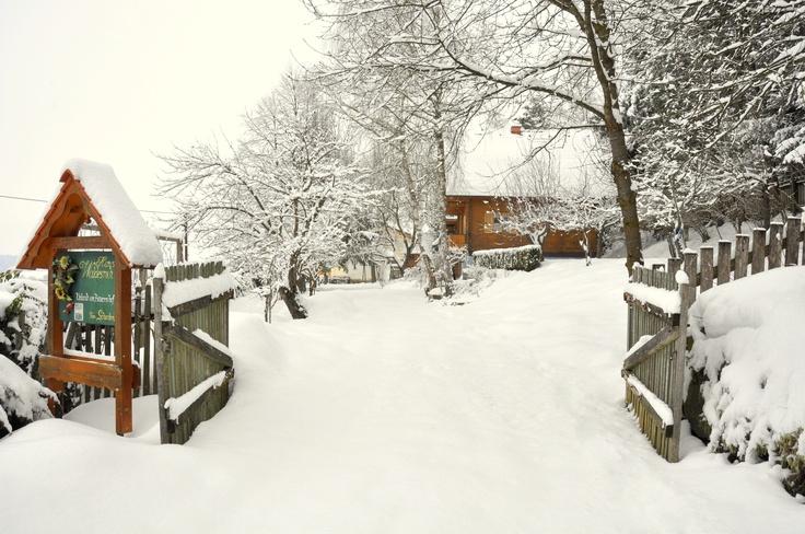 Auch im Winter steht unser Bio-Vollholzferienhaus für unsere Gäste zur Vefügung. - Fam. Schaden, St. Nikolai ob Drassling - www.hauswaldesruh.at
