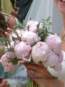 wedding flowers peony
