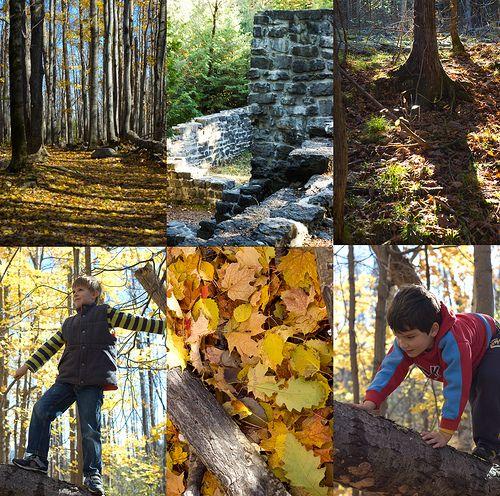 ** Ottawa's Hidden Treasures: The Lime Kiln Trail **