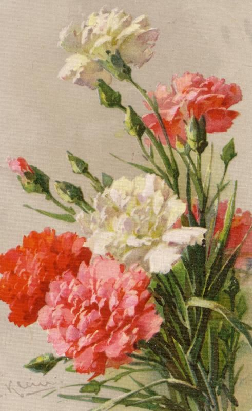 Victorian Postcard with Carnation Flowers.                                                                                                                                                                                 Mais
