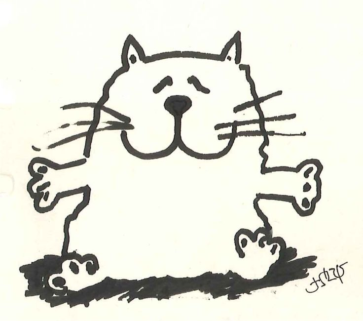 Fat cat!