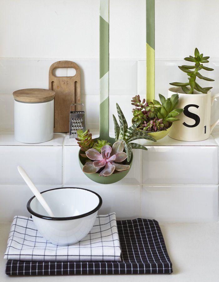 Récup : planter des succulentes dans des vieilles louches de cuisine !