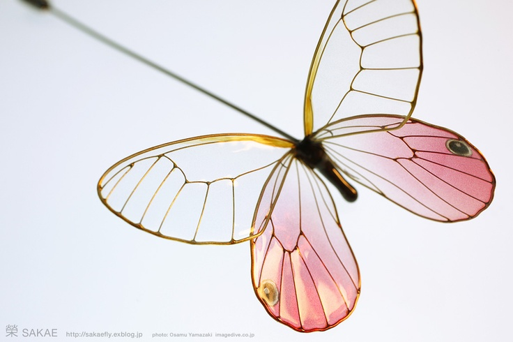 簪作家榮 2012蝶 ピン ベニスカシジャノメ Japanese hair accessory -Butterfly Pin- by Sakae, Japan http://sakaefly.exblog.jp/ http://www.flickr.com/photos/sakaefly/