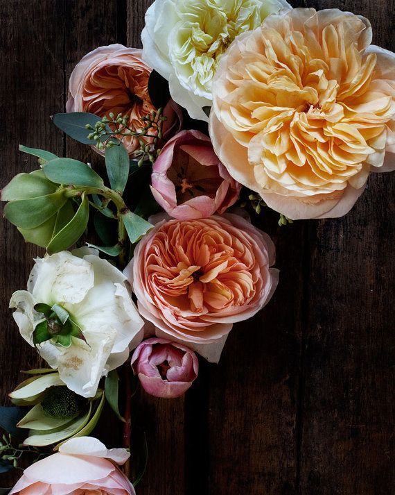 gorgeous peonies - peach pink and ivory