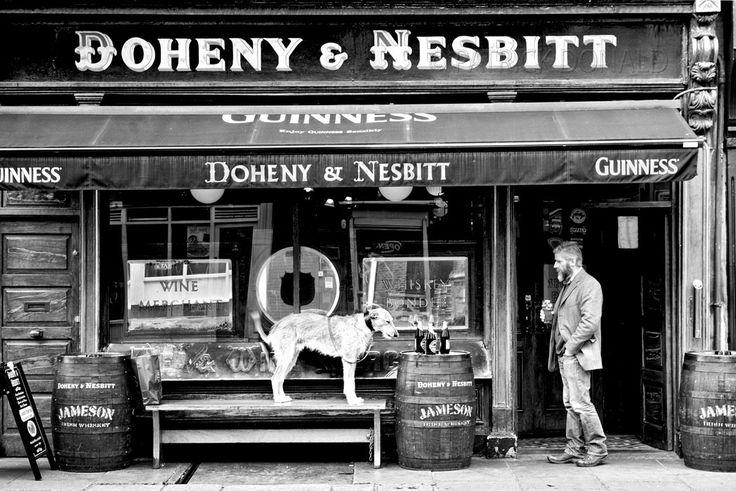 Doheny & Nesbitt's pub, Dublin, Ireland
