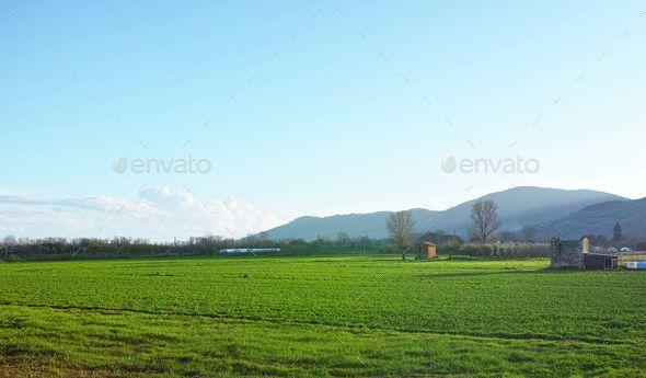 italian open country
