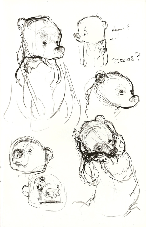 Bear reference sheet and sketching