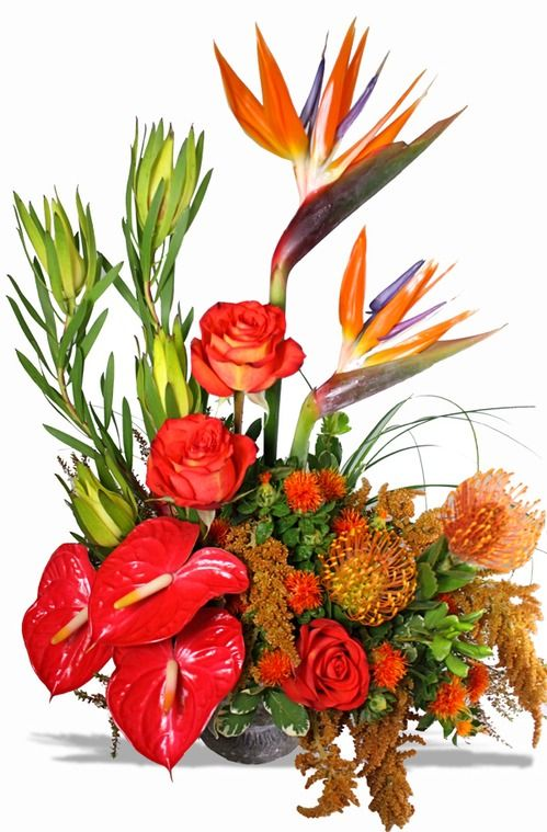 Exotic Flower Arrangements | ... Tropical Flowers. Shop online for new beautiful flower arrangements