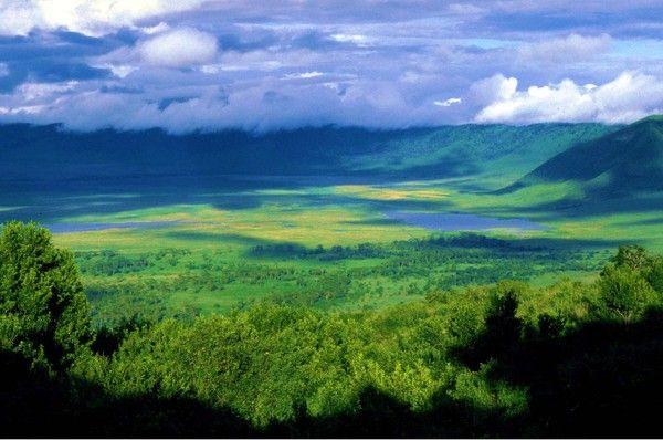 Cratère de Ngorogoro, Tanzanie