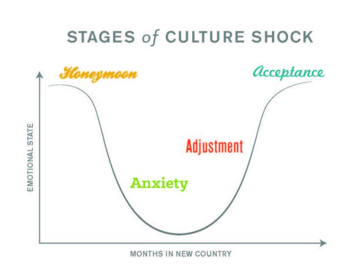 Stages of Culture Shock. Even if you are only in Romania for 2 weeks, you can experience all of these stages. www.heartofhope.org