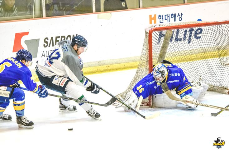161015 Matt Dalton  ::: Anyang Halla Ice Hockey Club :::
