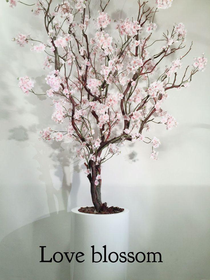 Stylerz24  Dé zijden bloemenwinkel die met een team stylistes de finishing touch aan uw winkel, etalage, kantoor of uw huis kunnen geven!  Wij maken alles op maat...