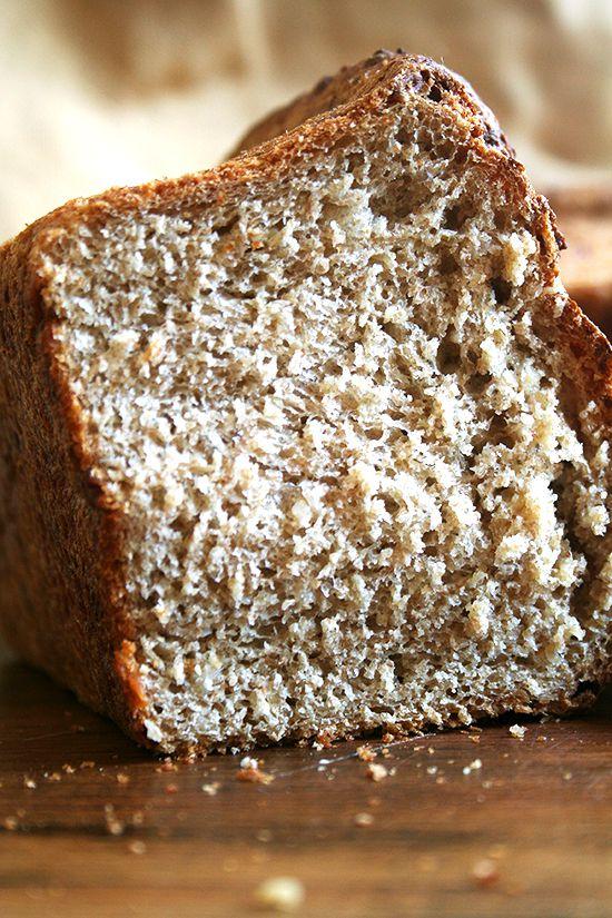 No-Knead Oatmeal Toasting Bread: No Knead Bread, Oatmeal Breads Recipes, Easy Noknead, Oatmeal Toast, Noknead Oatmeal, Toast Breads, Alexandra Cooking, No Knead Oatmeal, Easy No Knead