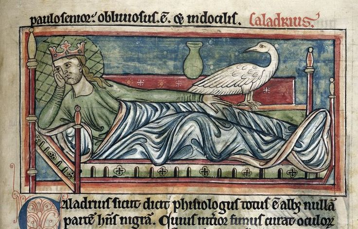 Detail of a miniature of a caladrius perched on the bed of a king, from a bestiary, with extracts from Giraldus Cambrensis on Irish birds, England (Salisbury?), 2nd quarter of the 13th century, Harley MS 4751, f. 40r  Although they are little-known today, caladrius birds were common features in medieval bestiaries. The caladrius, we are told in the bestiary text, makes its home in the courts of kings, and is pure white 'like the swan'. The dung of the caladrius was believed to cure…