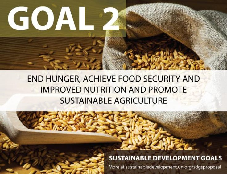 food security and hunger Throughout much of the world, food security and hunger are, in large part,  environmental issues it is crucial to recognize how the climate change is  affecting.