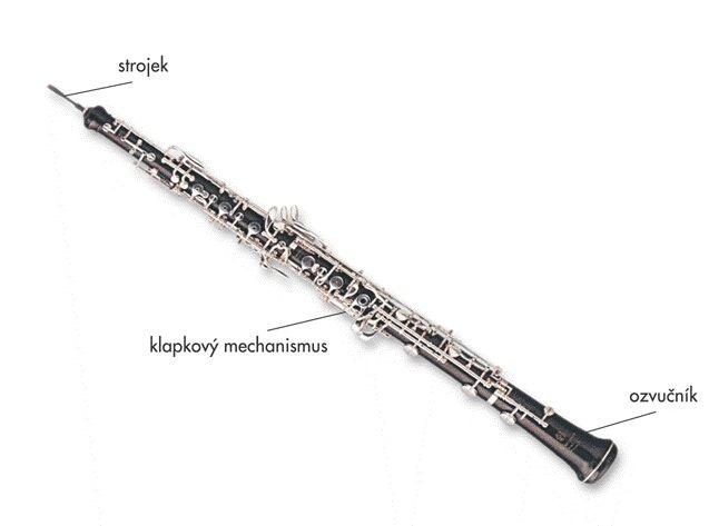 HOBOJ je dvojplátkový dechový nástroj laděný v C. Má široké uplatnění v klasické hudbě – je součástí symfonických i komorních orchestrů a mnoha dechových komorních souborů.