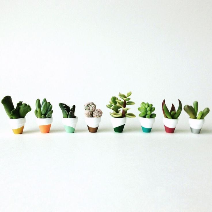 Mini dipped succulent pots via instagram @janell_pdx