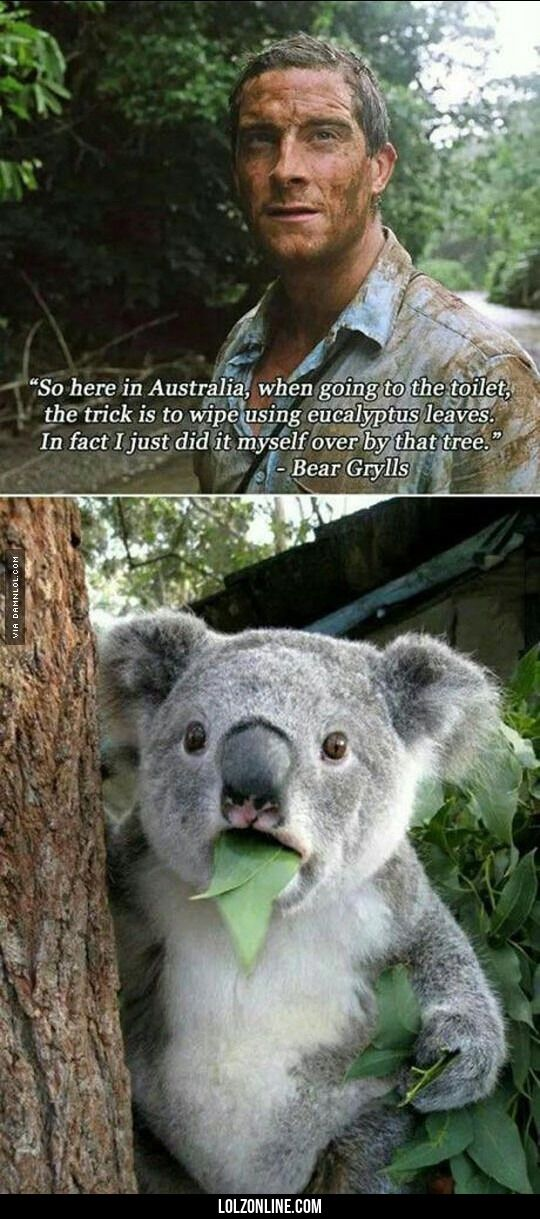 If You Are Ever In Australia#funny #lol #lolzonline
