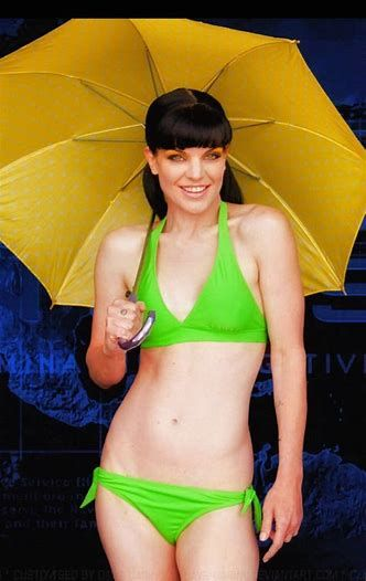 b215258511442 Image result for Pauley Perrette Thong Bikini