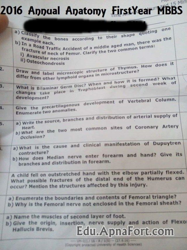 Uhs 1st Year Mbbs Anatomy Annual Paper 2016 Uhs Pinterest