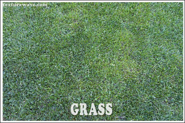 2 grass textures added - 5 photos texturewave.com
