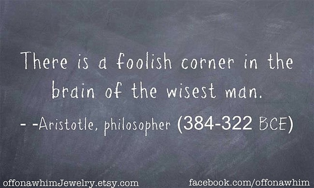 Aristotle Quote About Wisdom: 113 Best Images About Aristotle Quotes On Pinterest