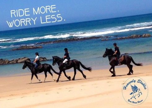 Horse Riding in Port Elizabeth - View our list of horse riding operators in Port Elizabeth, South Africa on our website...