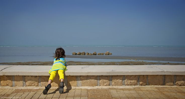 "Looking With Yekta  At the precious Persian gulf. Yekta is my niece and today is her birthday.   ""Had I told the sea What I felt for you, It would have left its shores, Its shells, Its fish, And followed me.""  ― Nizar Qabbani #LookingWith #photography #travel #PersianGulf #Bushehr #Iran #بوشهر #ایران"