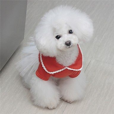 De Petary mascotas lindo Contraste de color Vestido de malla de algodón para el perro – EUR € 6.59