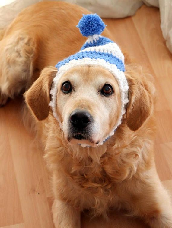 Dog Hat Dog Beanie Winter Hat For Dogs Large Breed Dog Hat