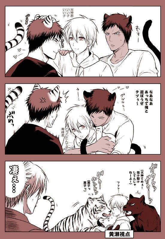 Tiger vs Panther!!