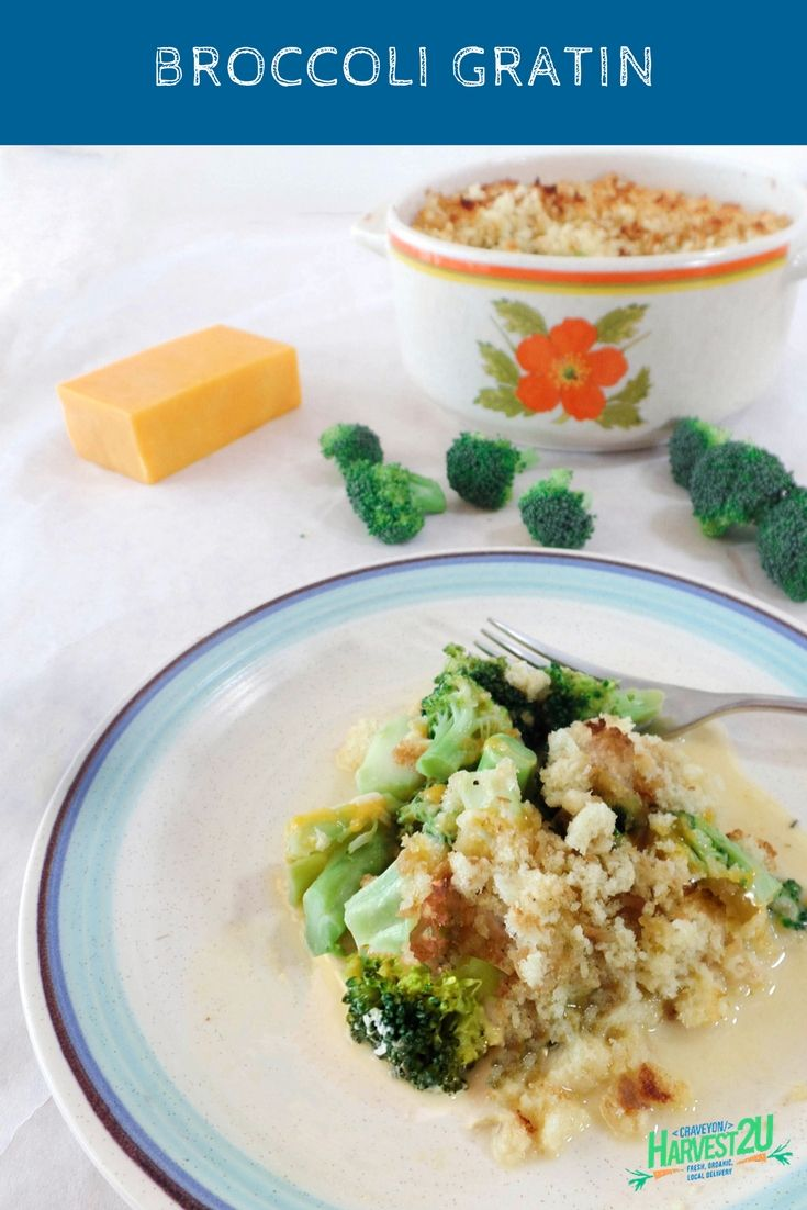 Broccoli Gratin is an excellent pairing of Broccoli and cheddar cheese. This dish is weeknight feast, but you can also double or triple it up for an excellent holiday side dish. #vegetable #recipes  #Broccoli