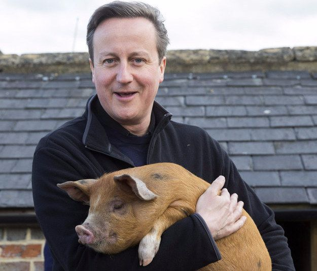 "David Cameron allegedly put a ""private part"" of his body into a dead pig while at Oxford University, according to a book released this week. 